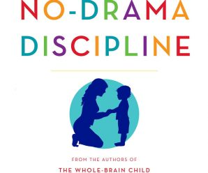 No-Drama Discipline Book review