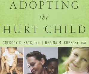 Adopting the hurt child Book review